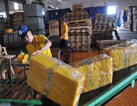 Cao su sơ chế xuất khẩu